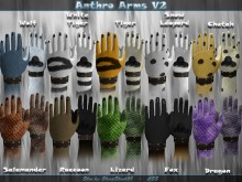 [Anthro Arms V2]